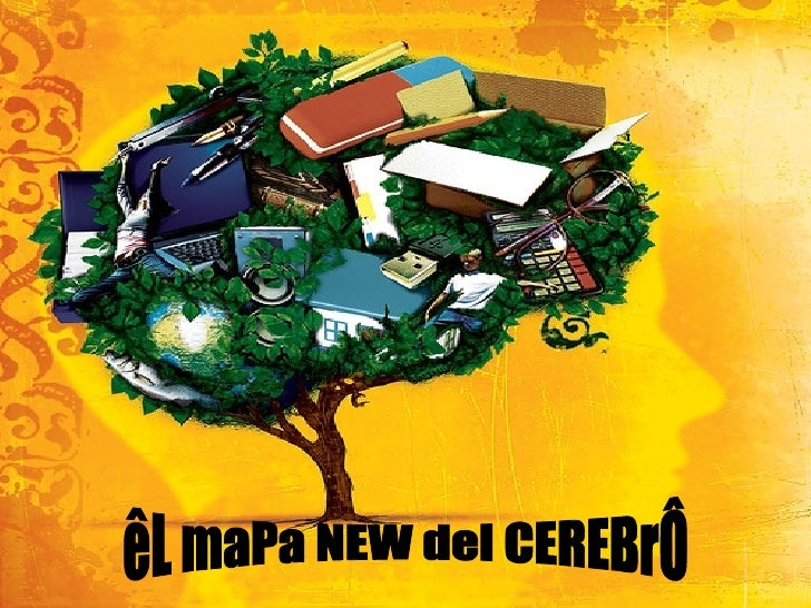 êL maPa NEW del CEREBrÔ