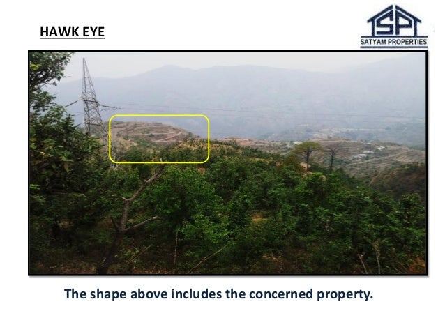 HAWK EYE  The shape above includes the concerned property.