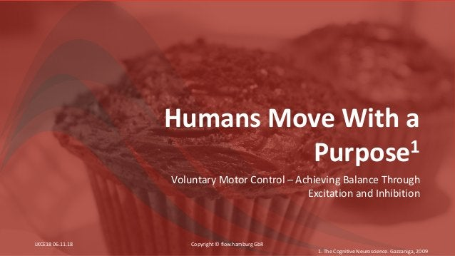 Humans Move With a Purpose1 Voluntary Motor Control – Achieving Balance Through Excitation and Inhibition 1. The Cognitive...