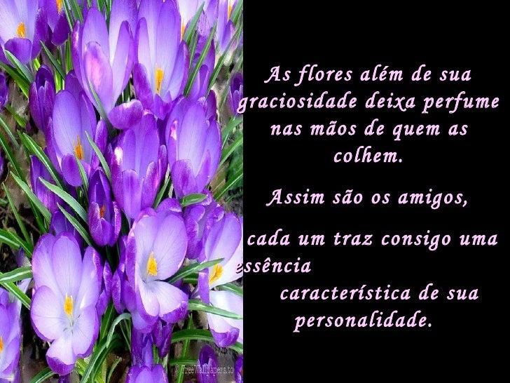 As flores além de sua graciosidade deixa perfume nas mãos de quem as colhem. Assim são os amigos, cada um traz consigo uma...