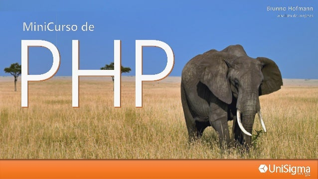 "PHP 'longo'  PHP 'curto'  Javascript  ASP  <?php ... ?>  <? ... ?>  <script language=""PHP""> ... </script>  <% ... %>  Uma ..."