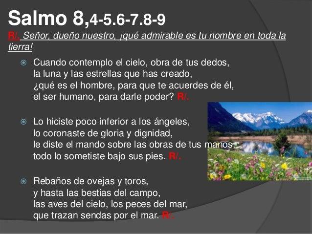 Resultado de imagen para Señor, dueño nuestro ¡que admirable es tu nombre en toda la tierra!  Señor, dueño nuestro, ¿qué es el hombre,