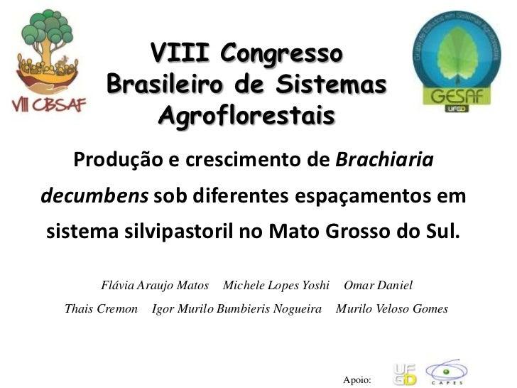 VIII Congresso        Brasileiro de Sistemas            Agroflorestais   Produção e crescimento de Brachiariadecumbens sob...
