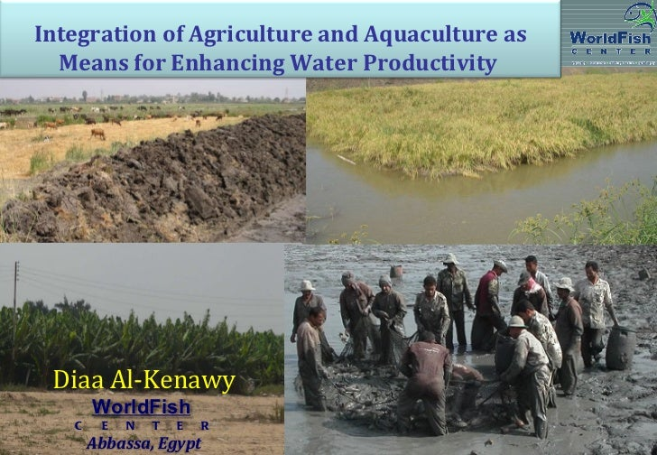 Integration of Agriculture and Aquaculture as Means for Enhancing Water Productivity  Diaa Al-Kenawy WorldFish   C  E  N...