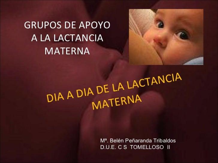 DIA A DIA DE LA LACTANCIA MATERNA GRUPOS DE APOYO A LA LACTANCIA MATERNA Mª. Belén Peñaranda Tribaldos D.U.E. C S  TOMELLO...