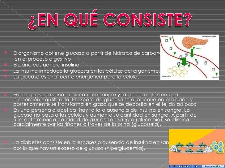 <ul><li>El organismo obtiene glucosa a partir de hidratos de carbono </li></ul><ul><li>  en el proceso digestivo  </li></u...