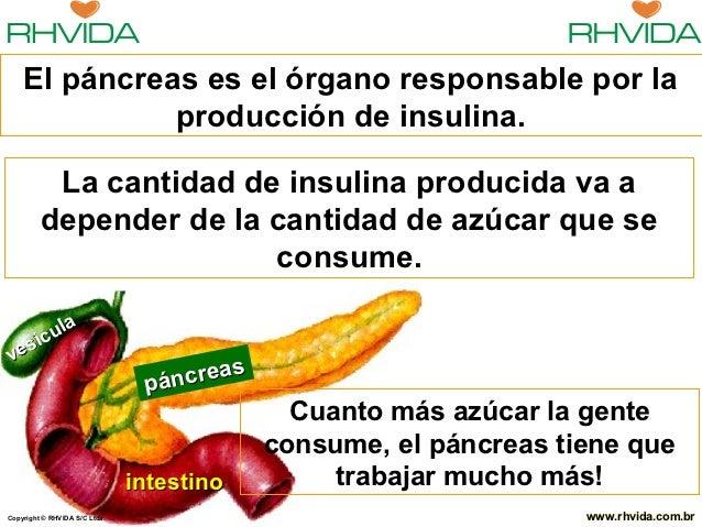 El páncreas es el órgano responsable por la              producción de insulina.          La cantidad de insulina producid...
