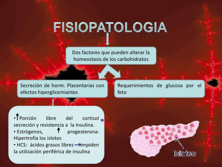 Diabetes gestacional monografia