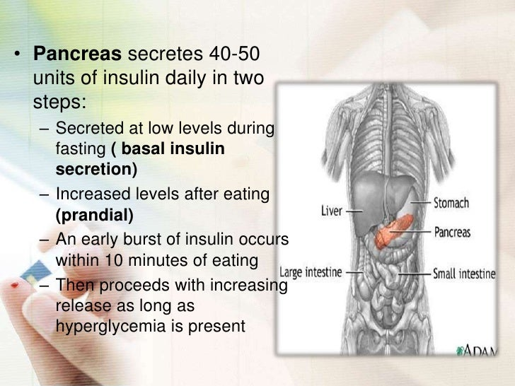 Diabetes Mellitus Slide 3