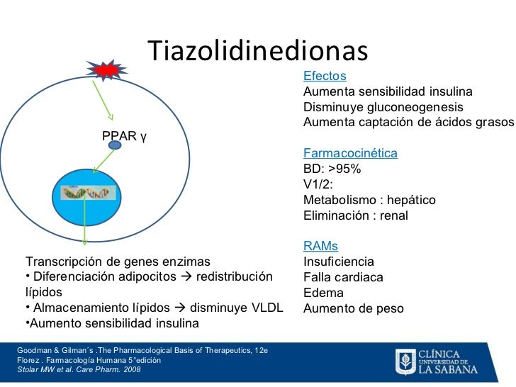 Diabetes Mellitus Farmacologia Clínica