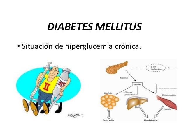 DIABETES MELLITUS • Situación de hiperglucemia crónica.