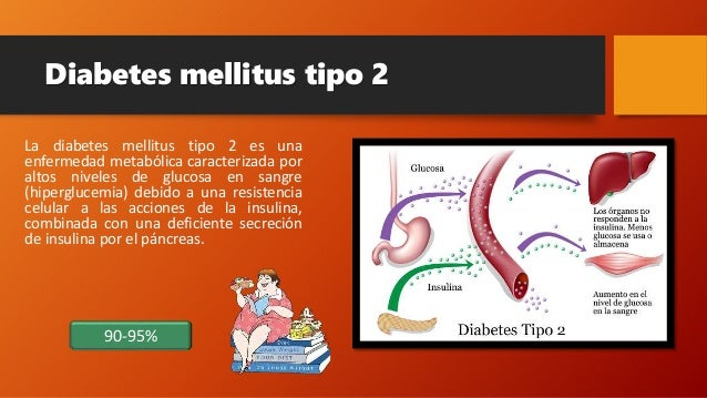 Pancreas endocrrino, Diabetes mellitus