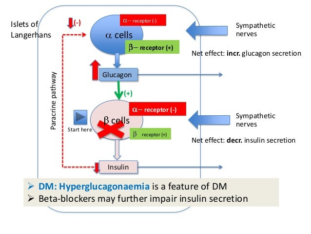 diabetogenic effect of steroids