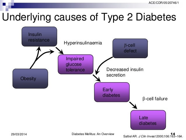 the two types of diabetes and their causes Diabetes causes more deaths a year than  get more information about types of medications  type 2 diabetes this two-page introduction to type 2 diabetes.