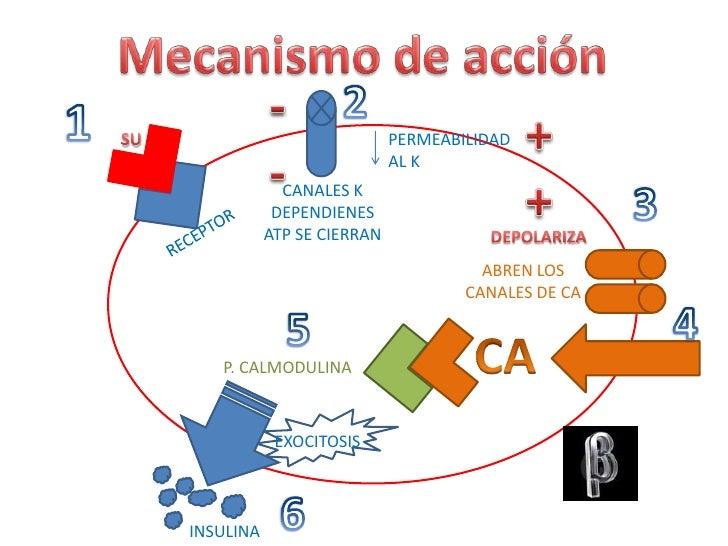 Diabetes mellitus Arturo Zepeda Aguilar