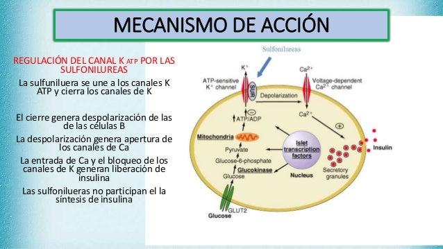 Diabetes mellitus,hipoglucemiantes orales