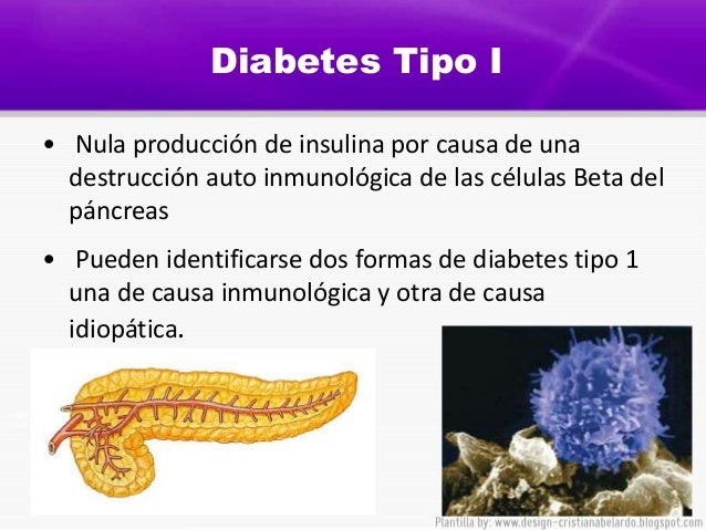 Consecuencias De La Diabetes | Holidays OO