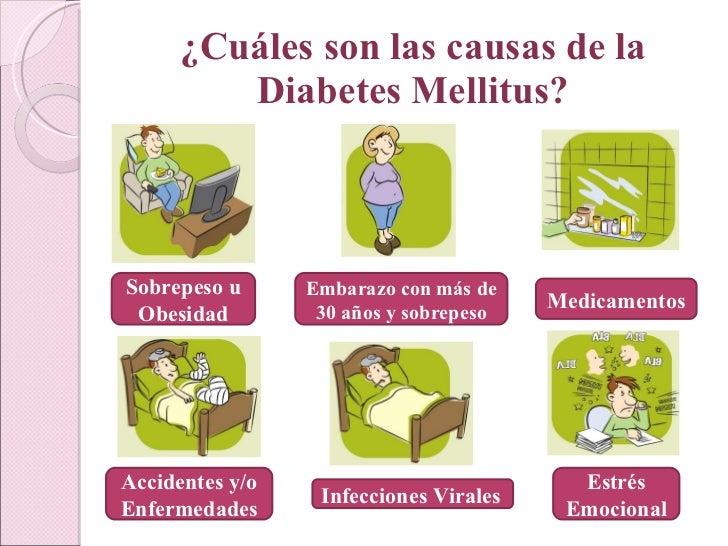 Diabetes mellitus, realizada por Paula Möller A.