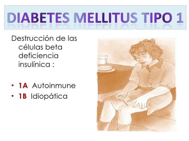 <ul><li>Destrucción de las células beta deficiencia insulínica : </li></ul><ul><li>1A  Autoinmune  </li></ul><ul><li>1B  I...