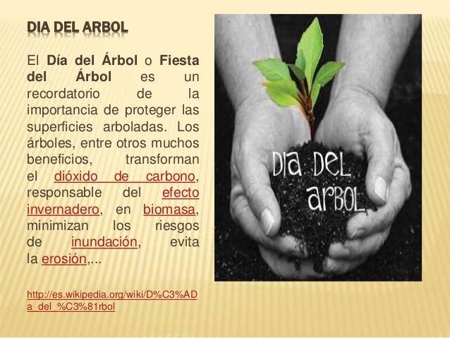 DIA DEL ARBOL  El Día del Árbol o Fiesta  del Árbol es un  recordatorio de la  importancia de proteger las  superficies ar...