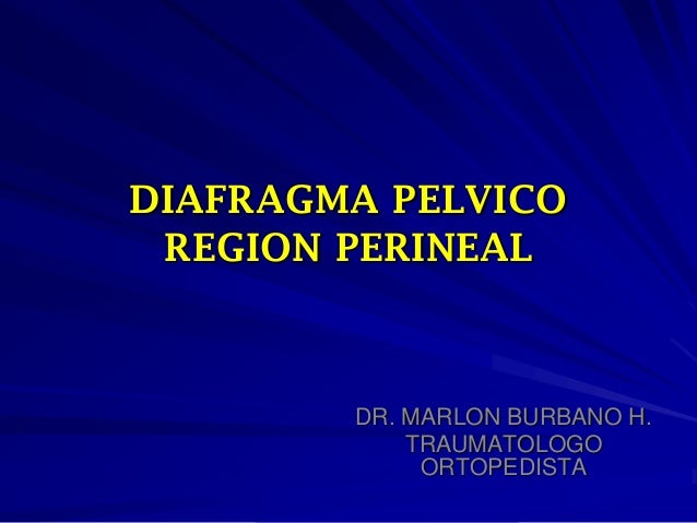DIAFRAGMA PELVICO REGION PERINEAL DR. MARLON BURBANO H. TRAUMATOLOGO ORTOPEDISTA