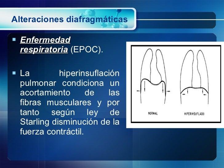 Alteraciones diafragmáticas <ul><li>Enfermedad respiratoria  (EPOC). </li></ul><ul><li>La hiperinsuflación pulmonar condic...