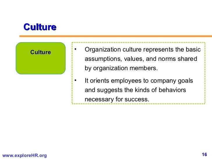 16 Culture UlliOrganization Represents The
