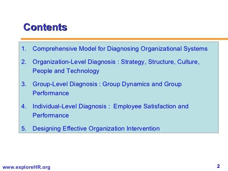 Diagnosing Organizational Effectiveness A Roadmap Toward Corporate Sustainability 2