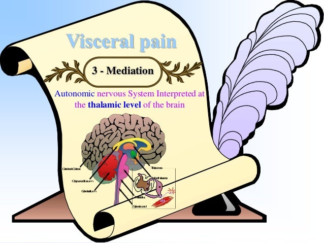 Visceral pain 4- Specificity Vague , often dull , poorly described & associated with nausea & vomiting