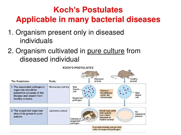 Koch's Postulates  Applicable in many bacterial diseases1. Organism present only in diseased    individuals2. Organism cul...