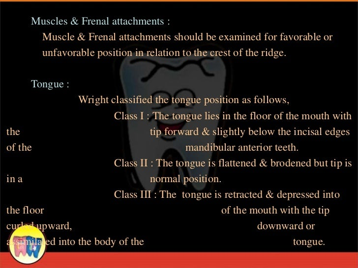 Muscles & Frenal attachments :      Muscle & Frenal attachments should be examined for favorable or      unfavorable posit...