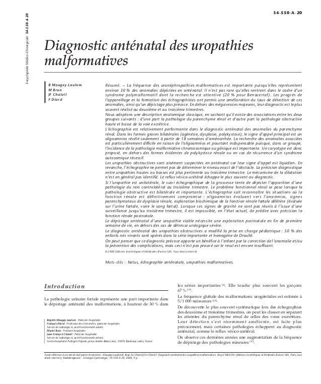 Diagnostic anténatal des uropathies  malformatives  B Maugey-Laulom  M Brun  JF Chateil  F Diard  Résumé. – La fréquence d...