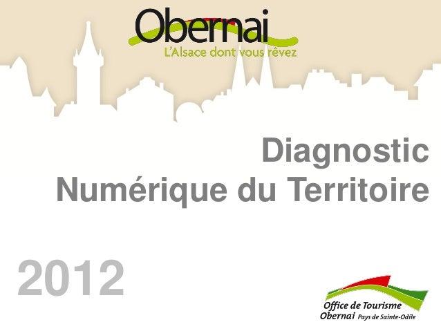 Diagnostic Numérique du Territoire2012