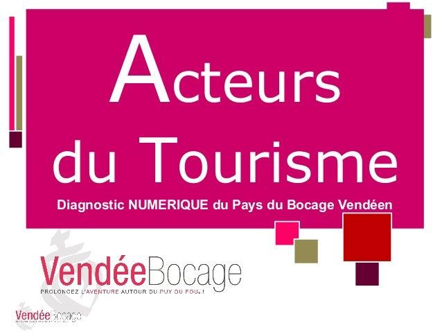 Acteurs  du Tourisme Diagnostic NUMERIQUE du Pays du Bocage Vendéen