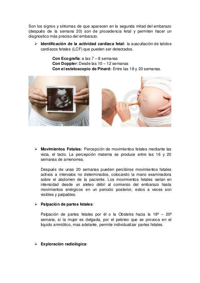 Lujo Exploración Sonoanatomía Ornamento - Anatomía de Las ...