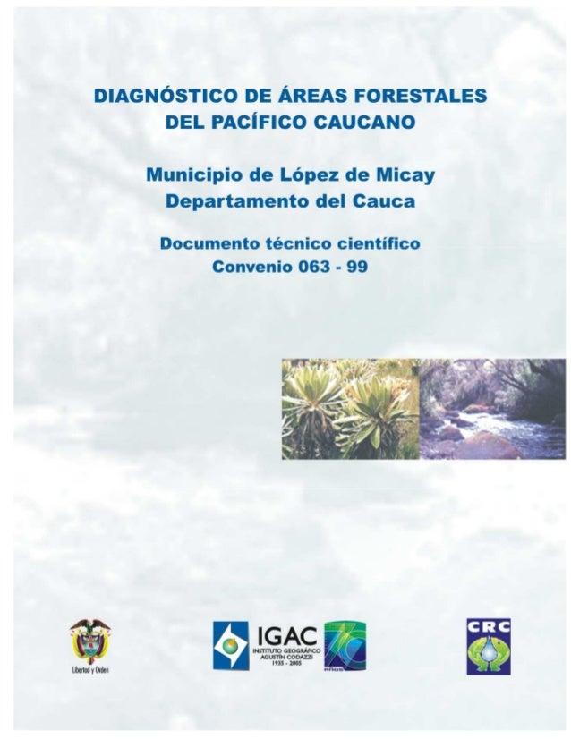 DIAGNOSTICO DE AREAS FORESTALES DEL PACIFICO CAUCANO  1