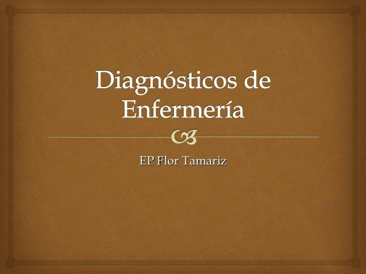 EP Flor Tamariz
