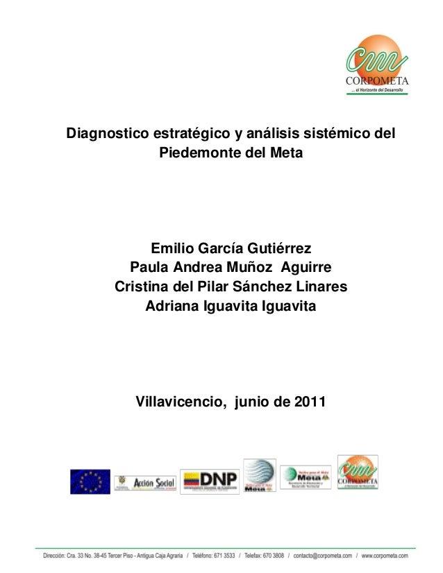 Diagnostico estratégico y análisis sistémico del Piedemonte del Meta Emilio García Gutiérrez Paula Andrea Muñoz Aguirre Cr...