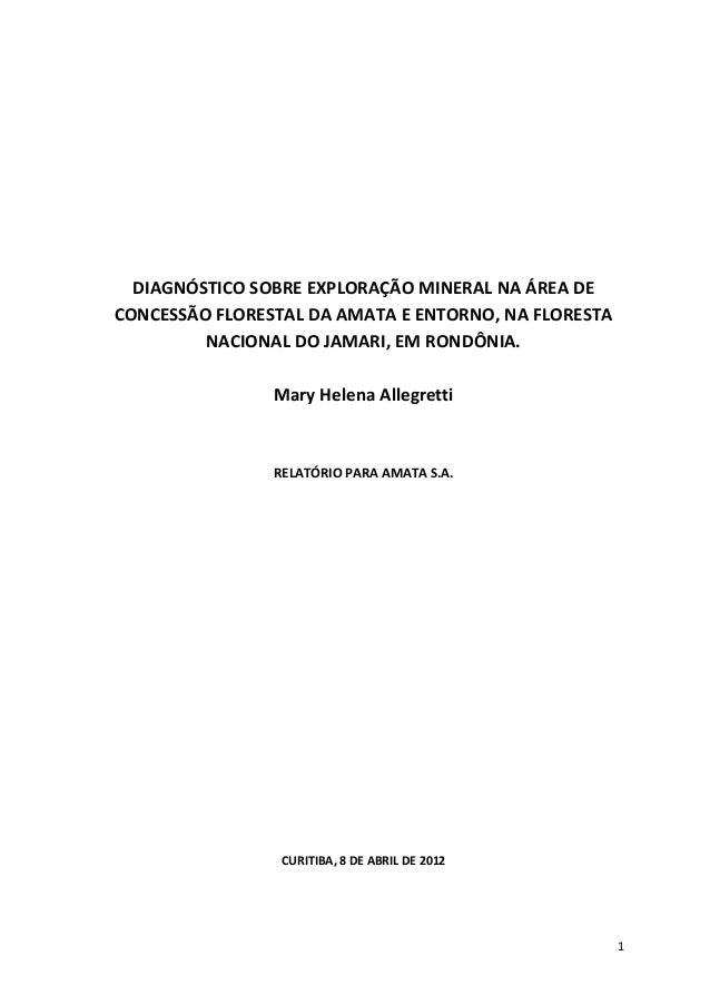 1 DIAGNÓSTICO SOBRE EXPLORAÇÃO MINERAL NA ÁREA DE CONCESSÃO FLORESTAL DA AMATA E ENTORNO, NA FLORESTA NACIONAL DO JAMARI, ...