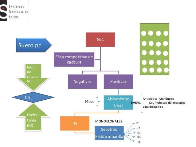 5 http www.bioline.org.br pdf st15135