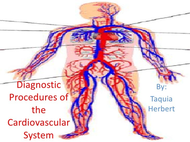 By:<br />Taquia Herbert<br />Diagnostic Procedures of the Cardiovascular System<br />
