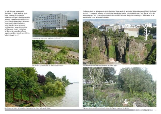 BAS CHANTENAY // PRE ATLAS 31 1) Préservation des habitats rivulaires localisés entre les quais de la Loire (gazon amphibi...