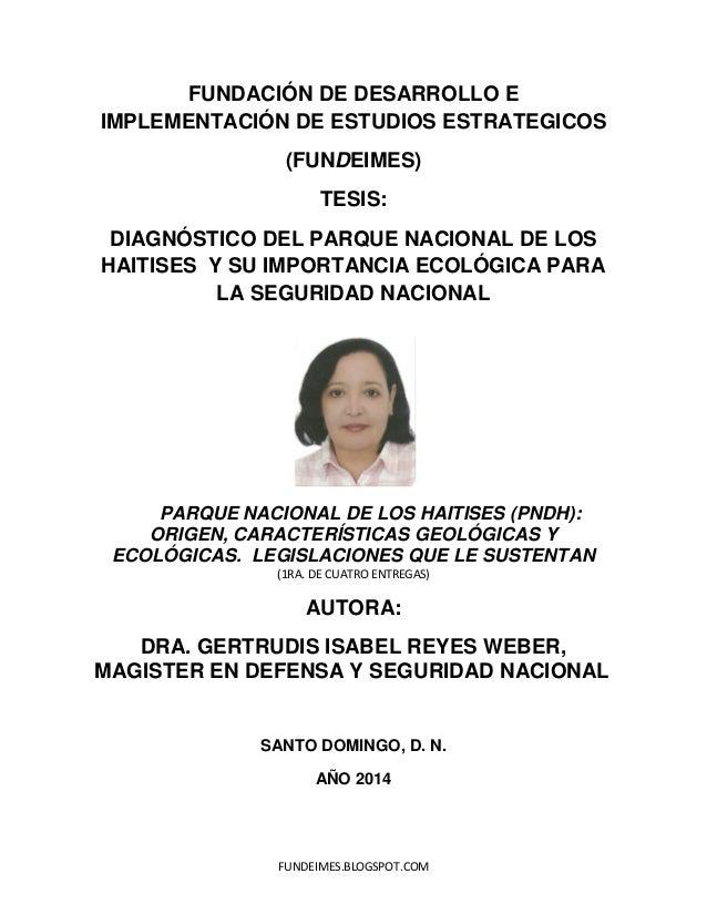 FUNDEIMES.BLOGSPOT.COM FUNDACIÓN DE DESARROLLO E IMPLEMENTACIÓN DE ESTUDIOS ESTRATEGICOS (FUNDEIMES) TESIS: DIAGNÓSTICO DE...