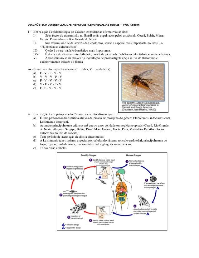 DIAGNÓSTICO DIFERENCIAL DAS HEPATOESPLENOMEGALIAS FEBRIS – Prof. Robson1- Em relação à epidemiologia do Calazar, considere...