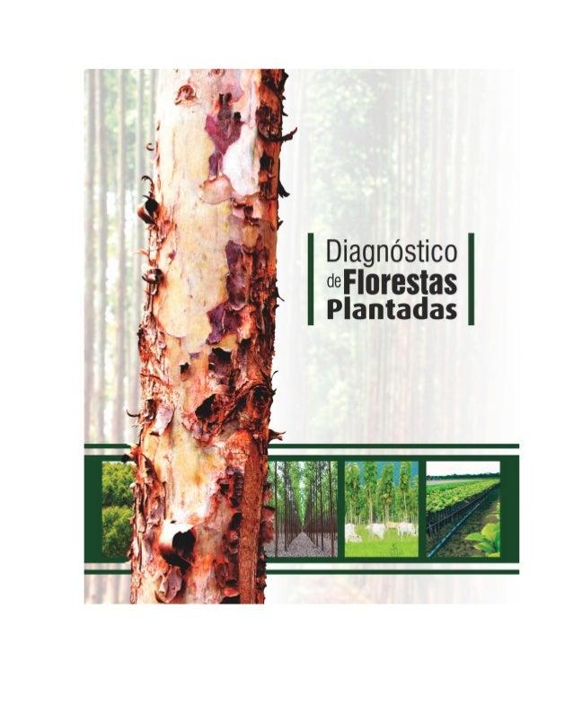 Diagnóstico de Florestas Plantadas do Estado de Mato Grosso 2 Federação da Agricultura e Pecuária do Estado de Mato Grosso...