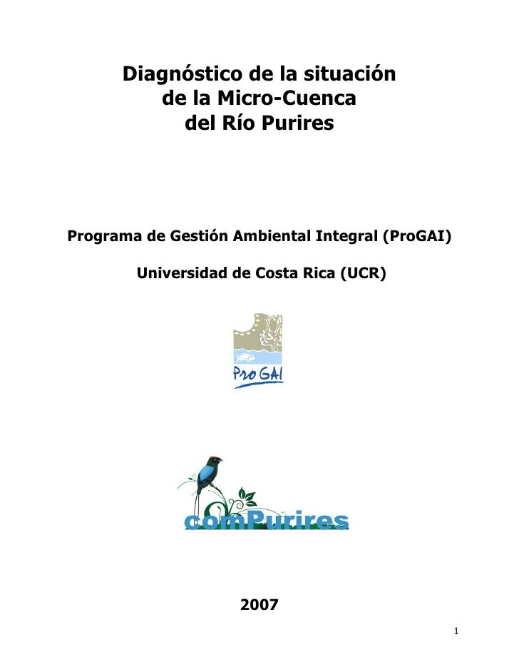Diagnóstico Micro-Cuenca Río Purires