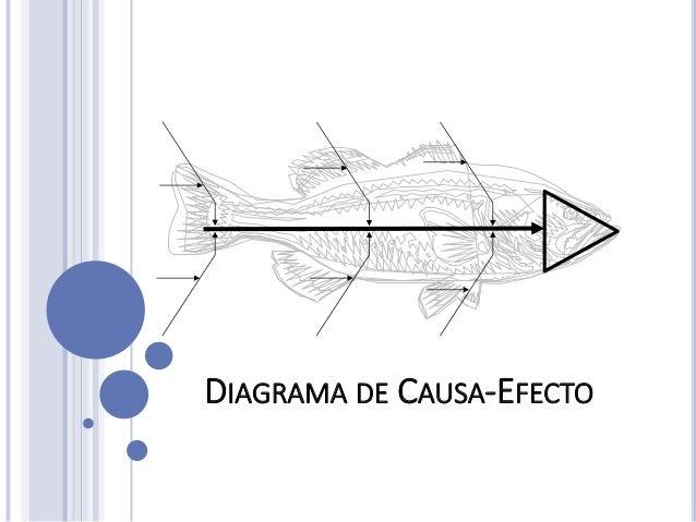 diagrama causa efecto Causa Y Efecto Tercer Grado diagrama de causa efecto