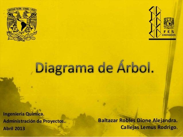 Ingeniería Química. Administración de Proyectos. Abril 2013  Baltazar Robles Dione Alejandra. Callejas Lemus Rodrigo.