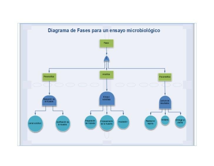 Diagrama fases para un ensayo microbiológico