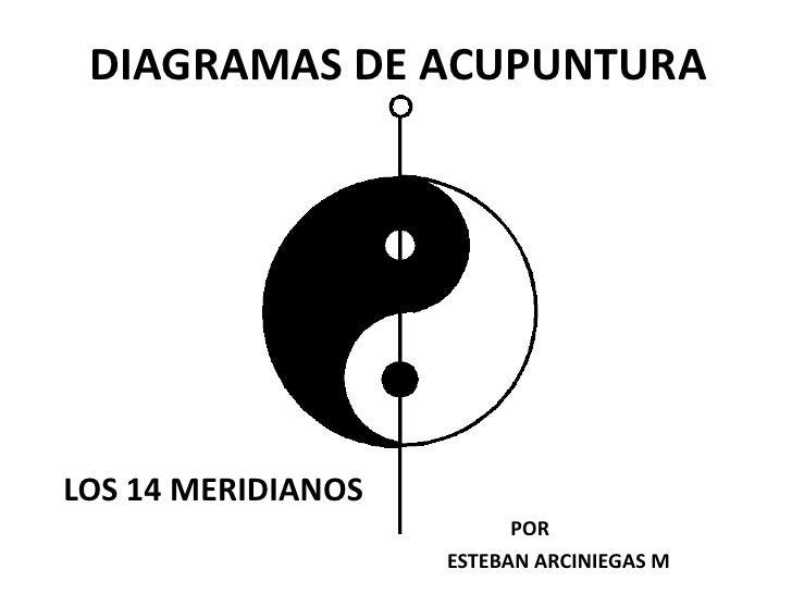 DIAGRAMAS DE ACUPUNTURA<br />LOS 14 MERIDIANOS<br />                                                                 POR<b...